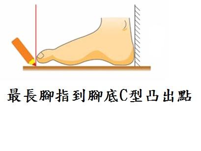 最長腳指到腳底C型凸出點